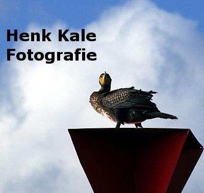 Henk Kale Fotografie